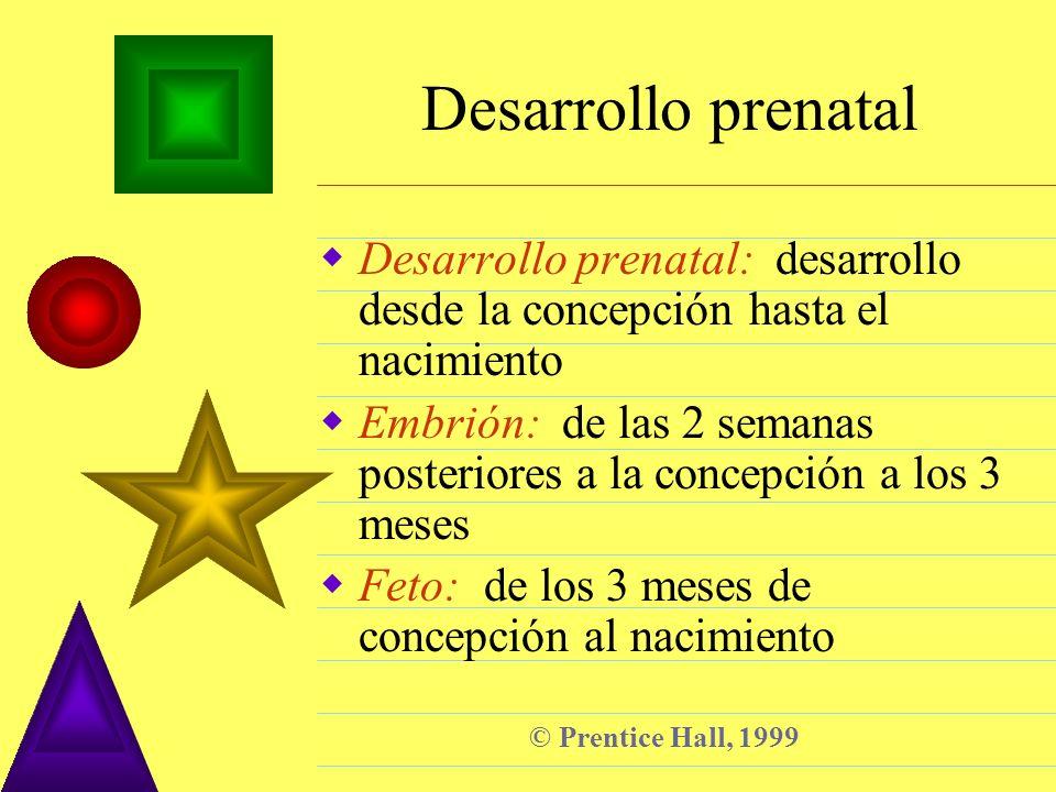 Desarrollo prenatalDesarrollo prenatal: desarrollo desde la concepción hasta el nacimiento.