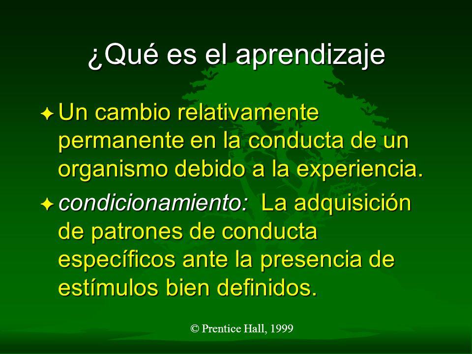 ¿Qué es el aprendizaje Un cambio relativamente permanente en la conducta de un organismo debido a la experiencia.