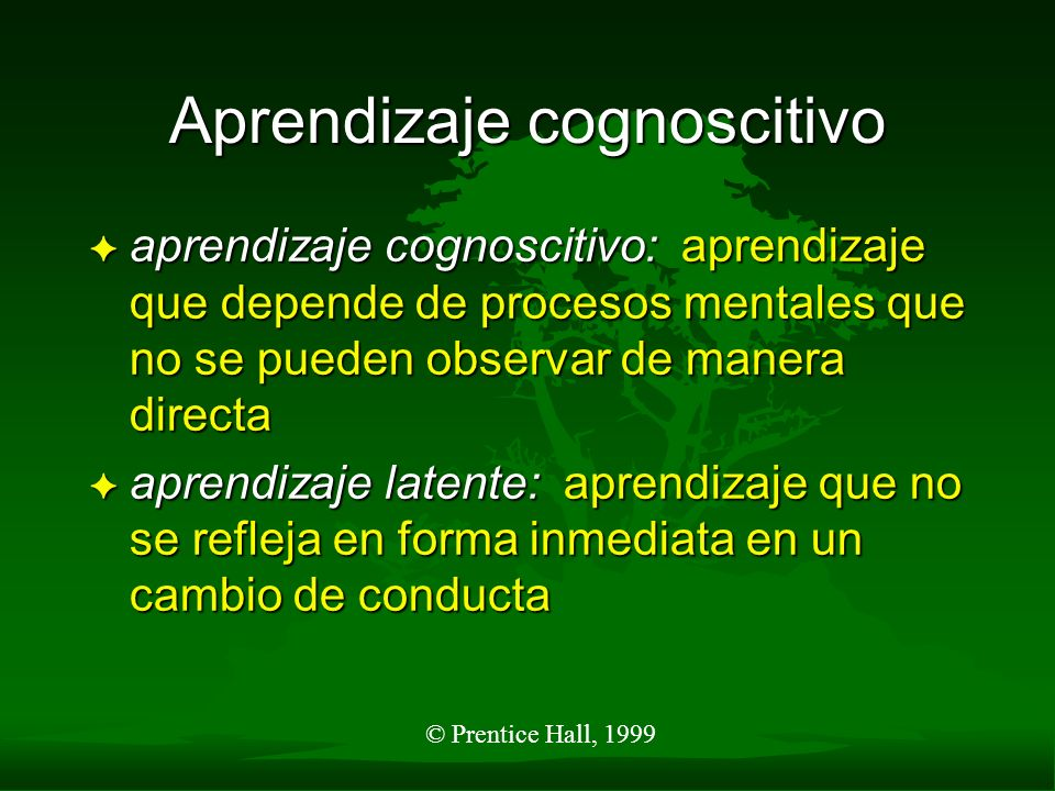Aprendizaje cognoscitivo