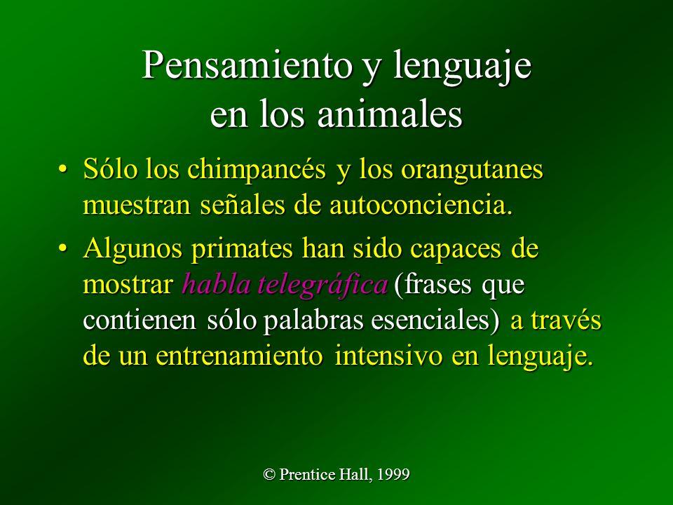 Pensamiento y lenguaje en los animales
