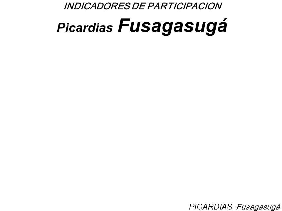INDICADORES DE PARTICIPACION Picardias Fusagasugá