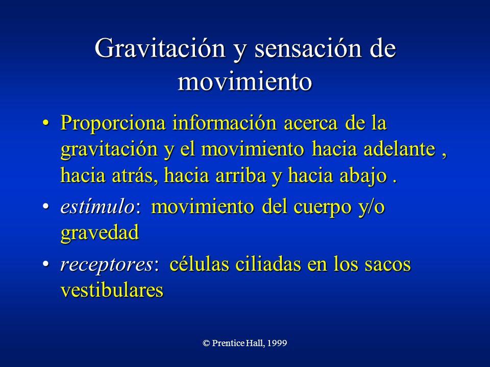 Gravitación y sensación de movimiento