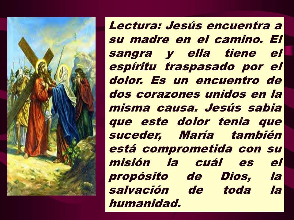 Lectura: Jesús encuentra a su madre en el camino