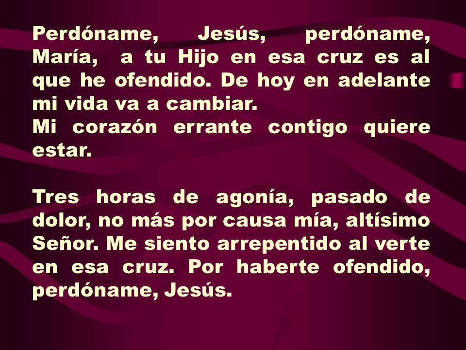 Perdóname, Jesús, perdóname, María, a tu Hijo en esa cruz es al que he ofendido. De hoy en adelante mi vida va a cambiar.