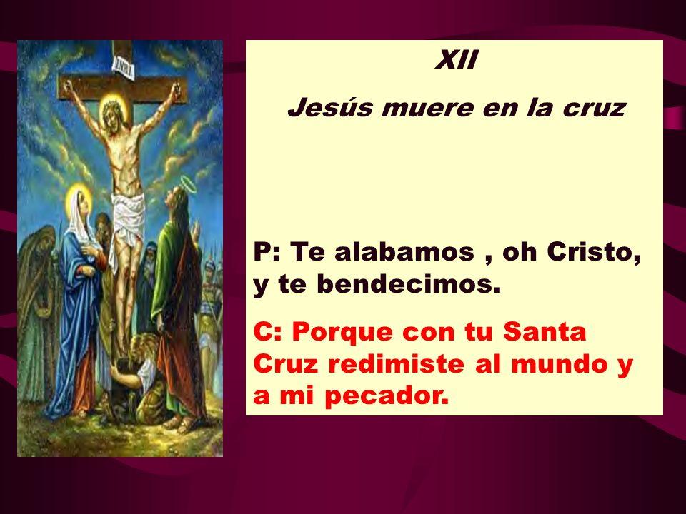 XII Jesús muere en la cruz. P: Te alabamos , oh Cristo, y te bendecimos.