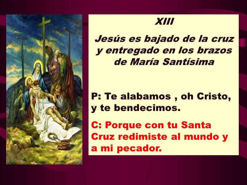 XIII Jesús es bajado de la cruz y entregado en los brazos de María Santísima. P: Te alabamos , oh Cristo, y te bendecimos.