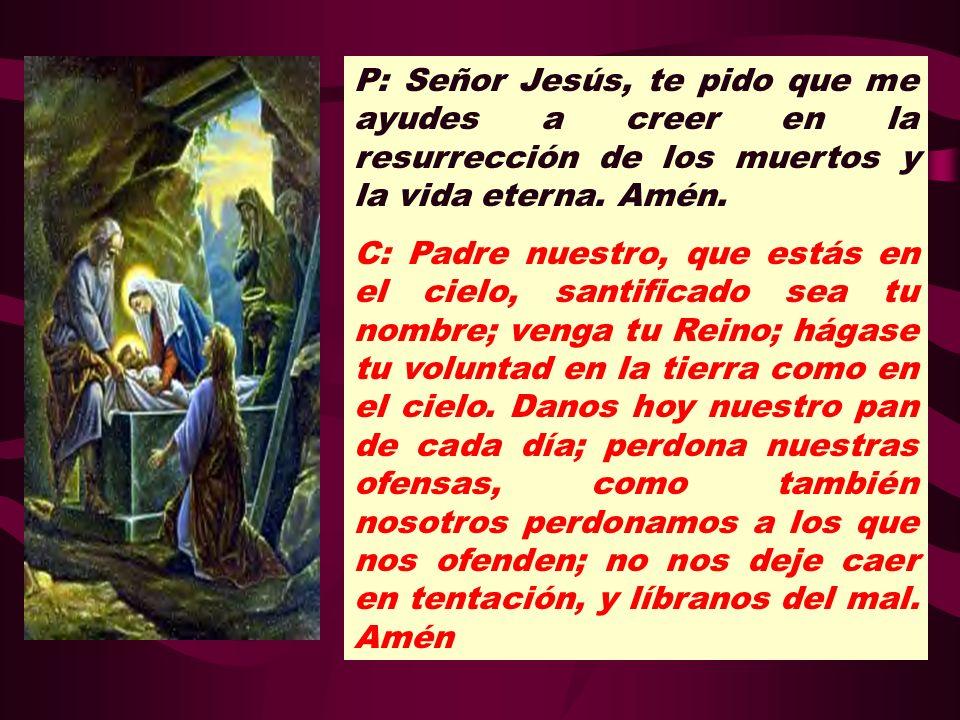 P: Señor Jesús, te pido que me ayudes a creer en la resurrección de los muertos y la vida eterna. Amén.