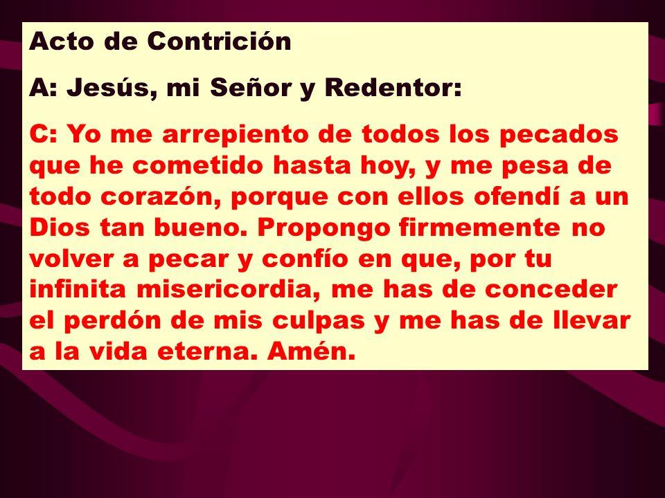 Acto de ContriciónA: Jesús, mi Señor y Redentor: