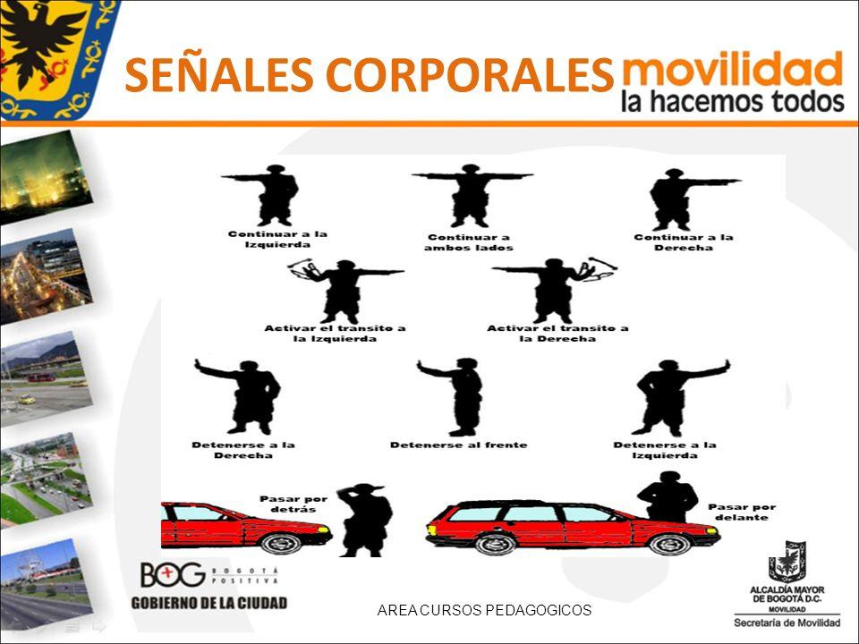 SEÑALES CORPORALES AREA CURSOS PEDAGOGICOS