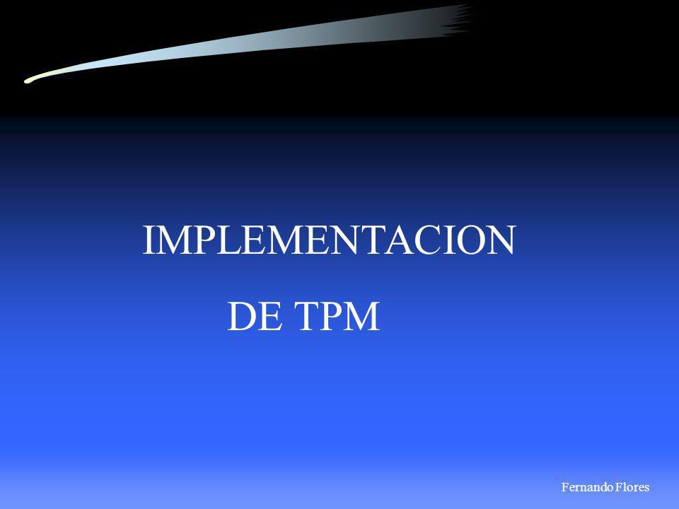 IMPLEMENTACION DE TPM Fernando Flores 12