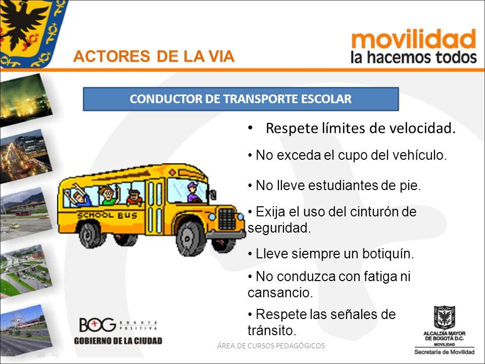 CONDUCTOR DE TRANSPORTE ESCOLAR