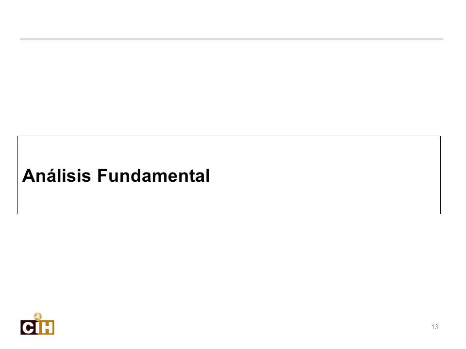 Análisis Fundamental 13