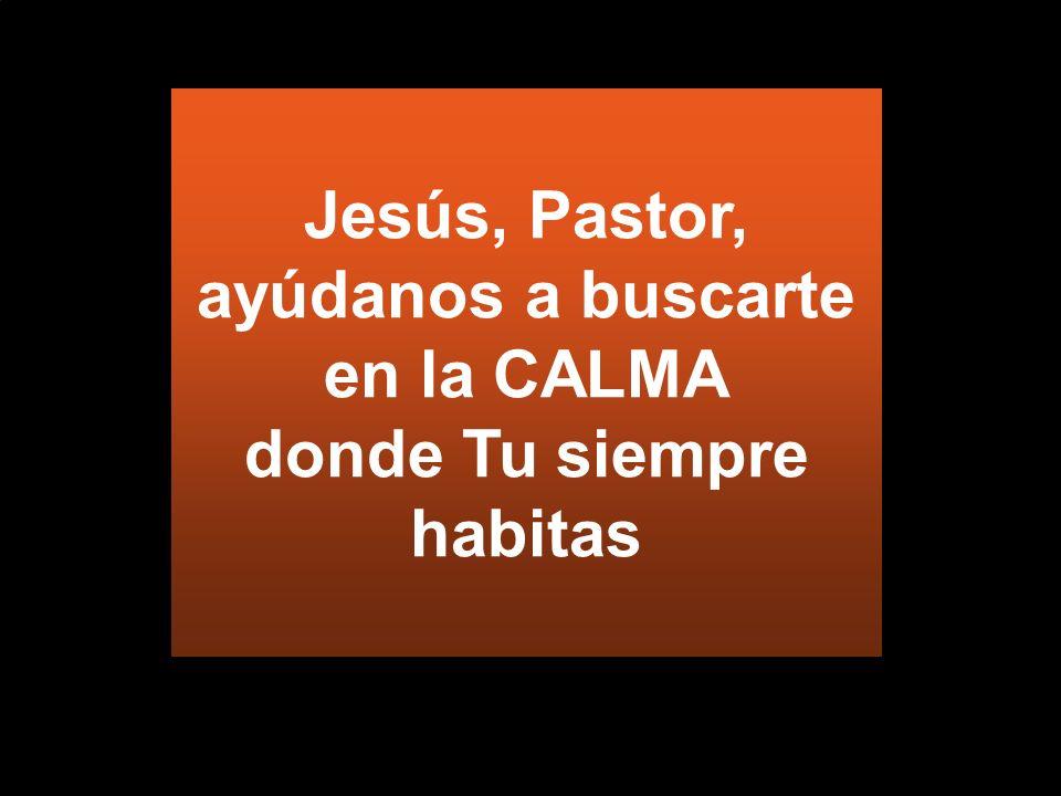Jesús, Pastor, ayúdanos a buscarte en la CALMA donde Tu siempre habitas