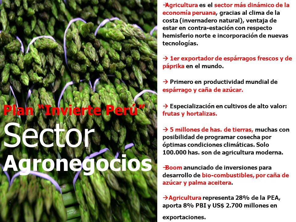 Sector Agronegocios Plan Invierte Perú