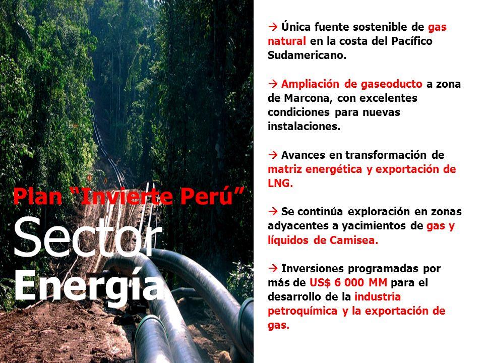 Sector Energía Plan Invierte Perú