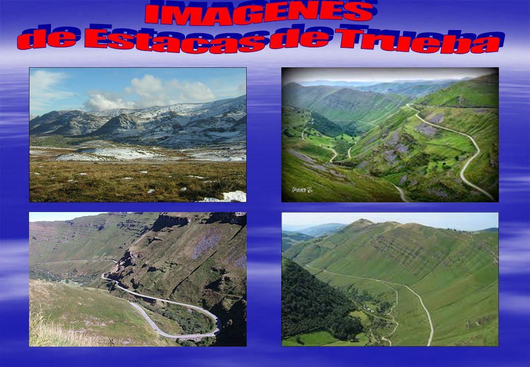 IMAGENES de Estacas de Trueba