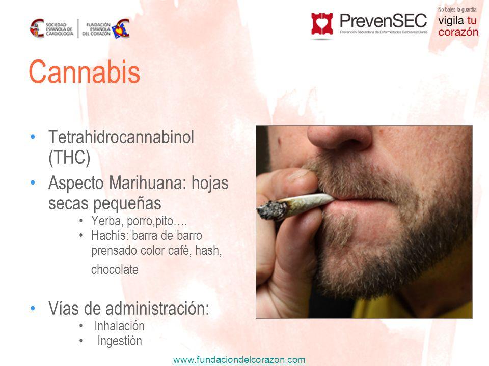 Cannabis Tetrahidrocannabinol (THC)