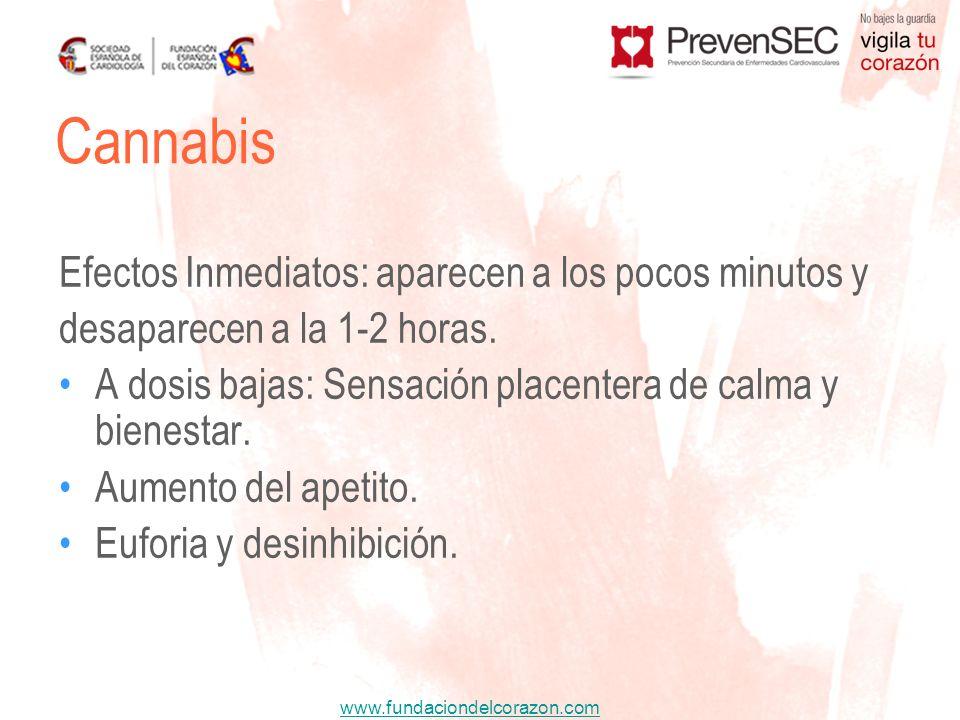 Cannabis Efectos Inmediatos: aparecen a los pocos minutos y