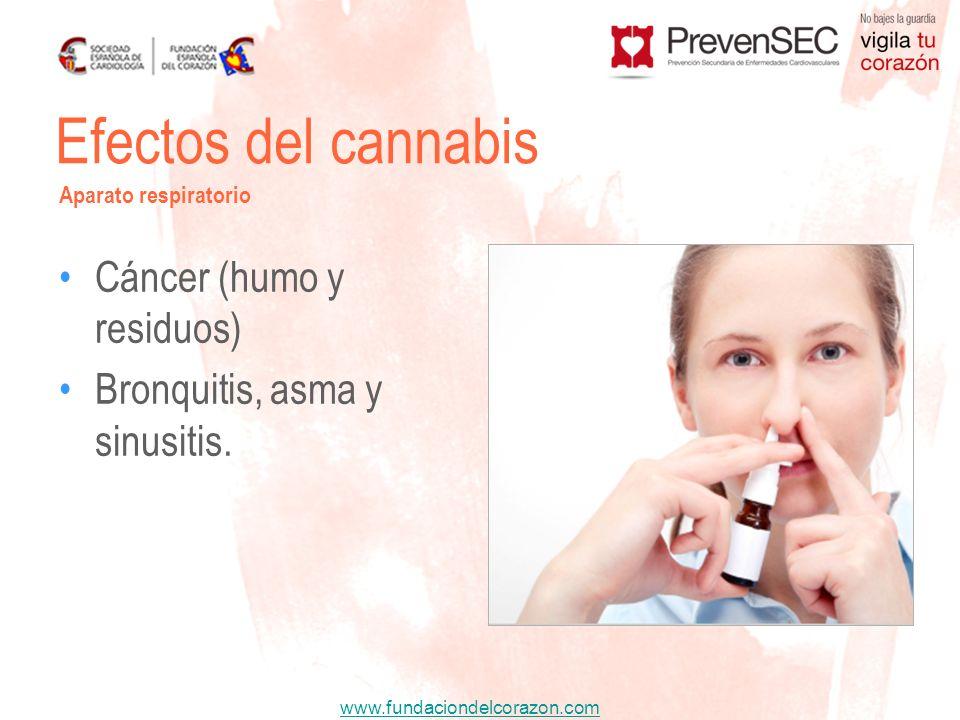 Efectos del cannabis Cáncer (humo y residuos)