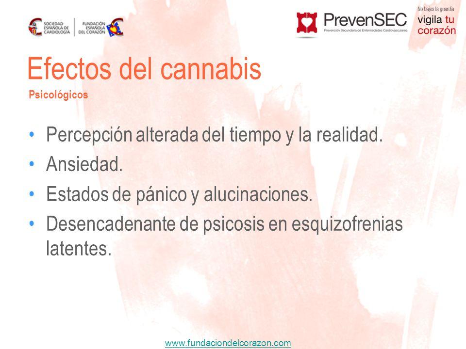 Efectos del cannabis Percepción alterada del tiempo y la realidad.
