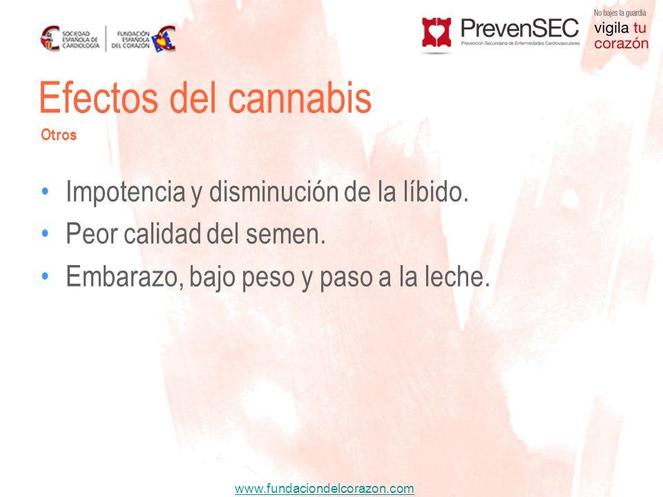 Efectos del cannabis Impotencia y disminución de la líbido.