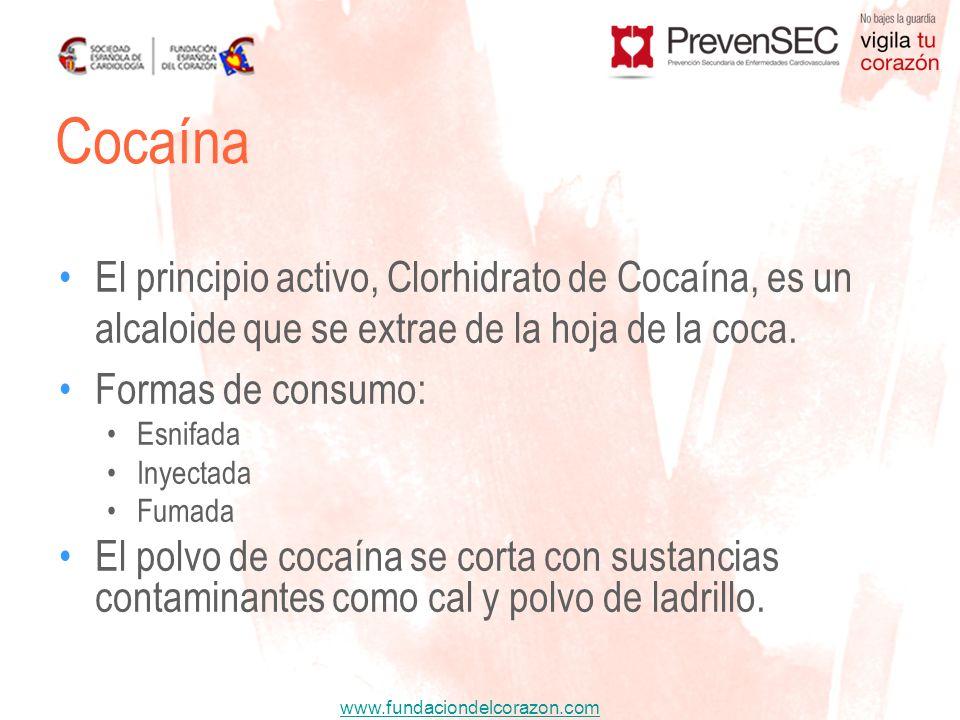 Cocaína El principio activo, Clorhidrato de Cocaína, es un alcaloide que se extrae de la hoja de la coca.