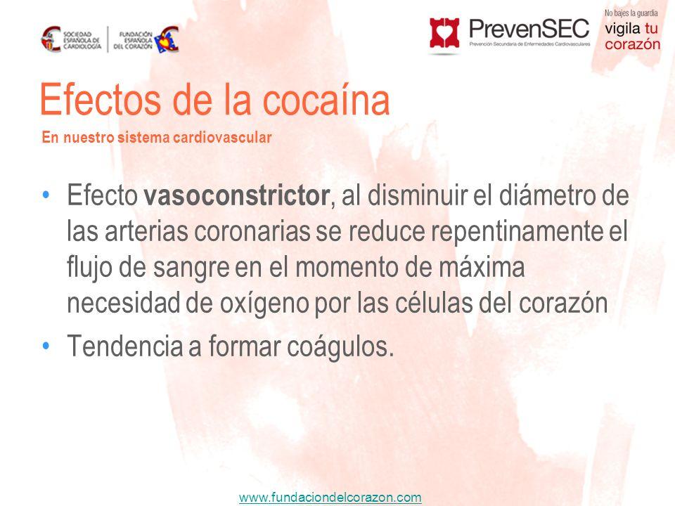 Efectos de la cocaína En nuestro sistema cardiovascular.