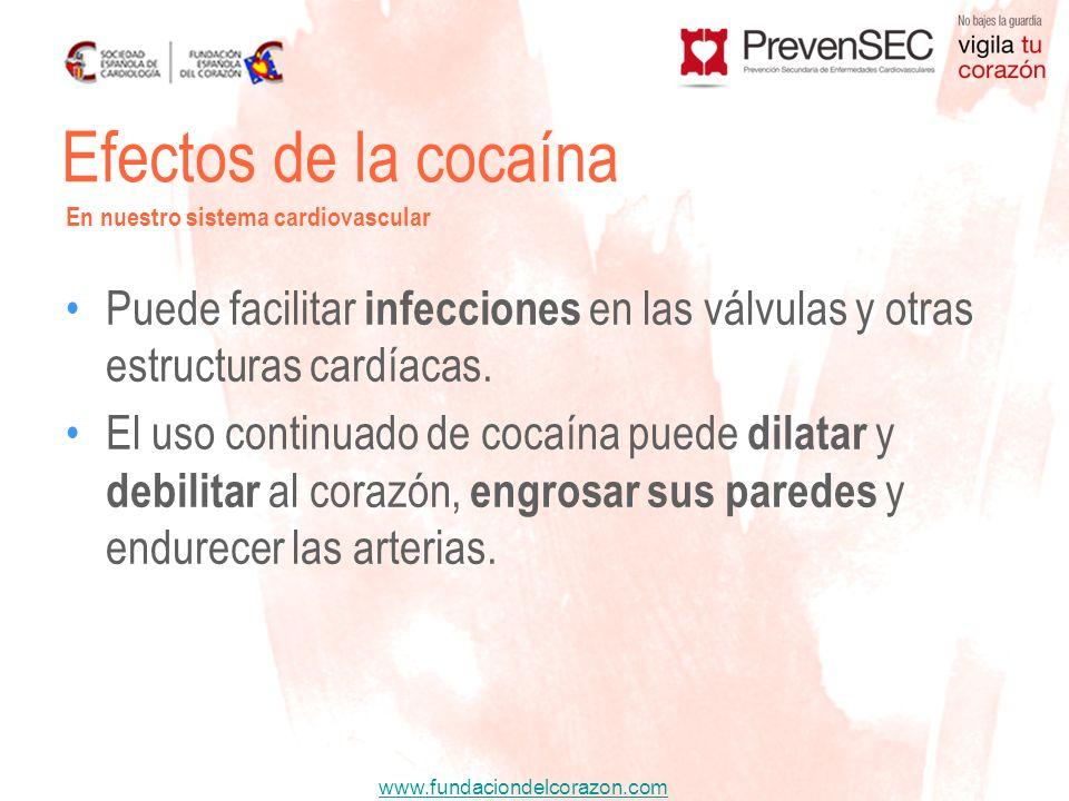 Efectos de la cocaína En nuestro sistema cardiovascular. Puede facilitar infecciones en las válvulas y otras estructuras cardíacas.