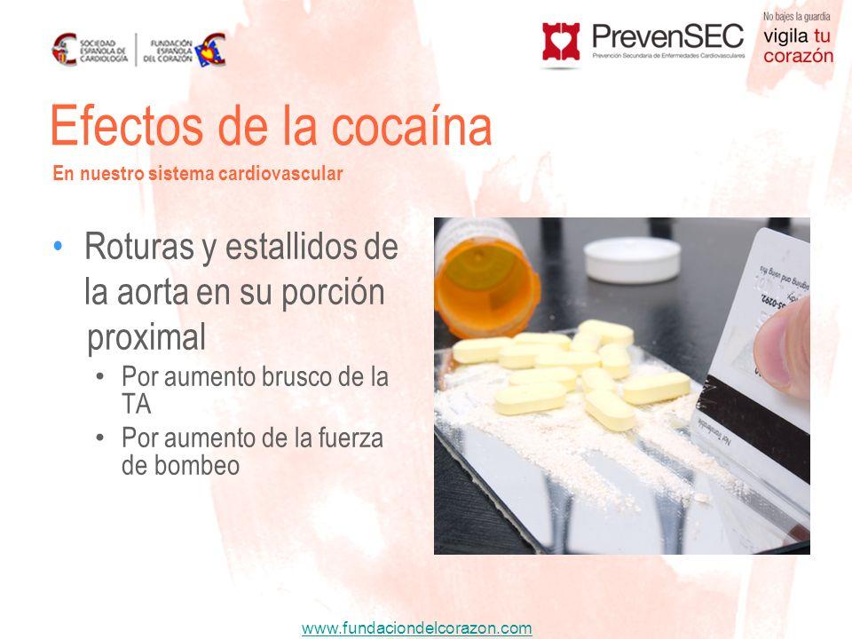 Efectos de la cocaína Roturas y estallidos de la aorta en su porción