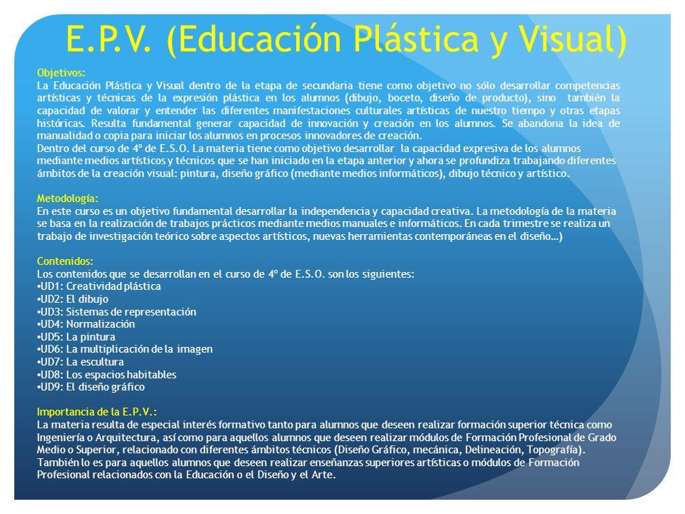 E.P.V. (Educación Plástica y Visual)