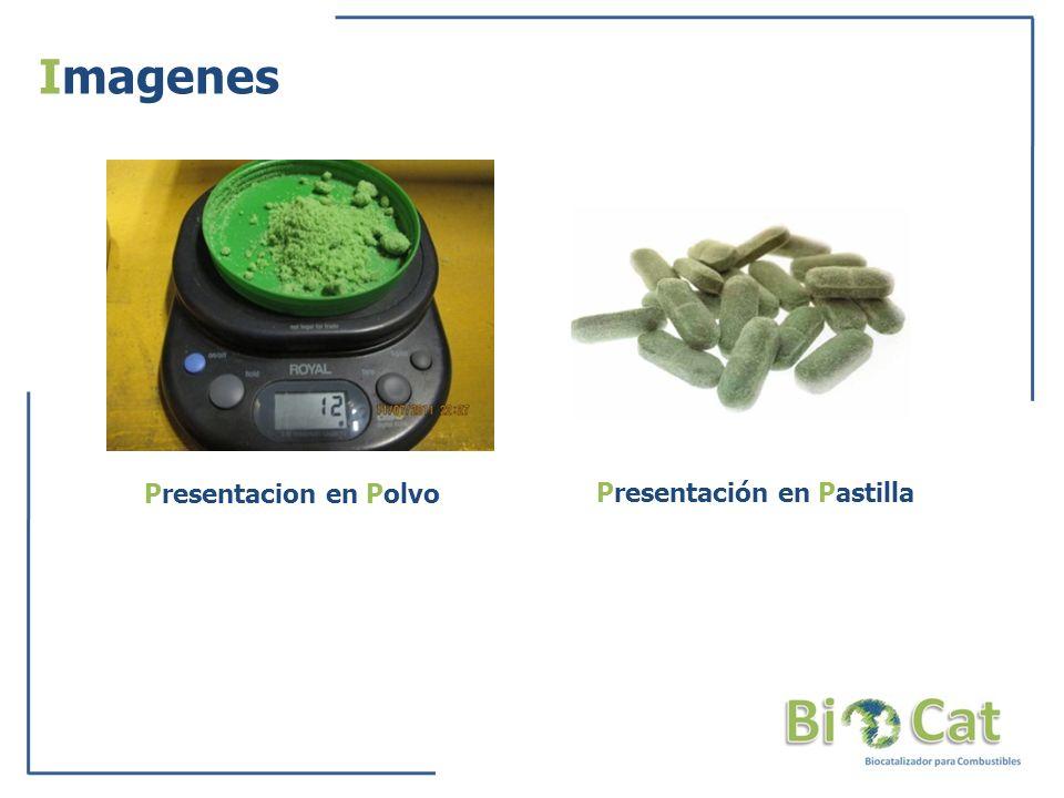Imagenes Presentacion en Polvo Presentación en Pastilla