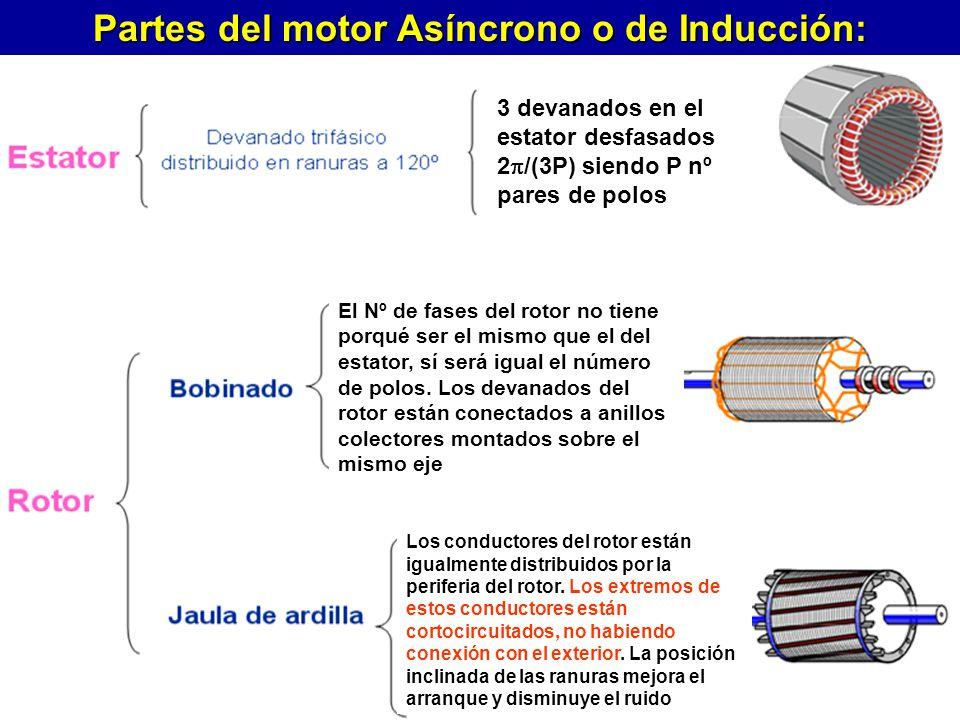 Partes del motor Asíncrono o de Inducción: