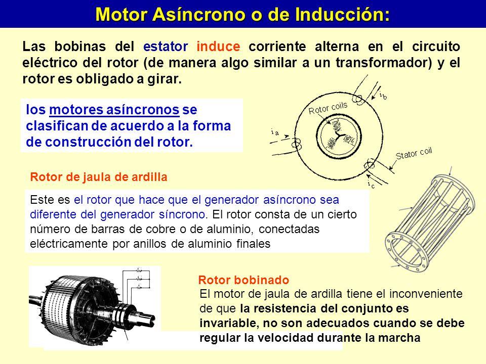 Motor Asíncrono o de Inducción: Rotor de jaula de ardilla