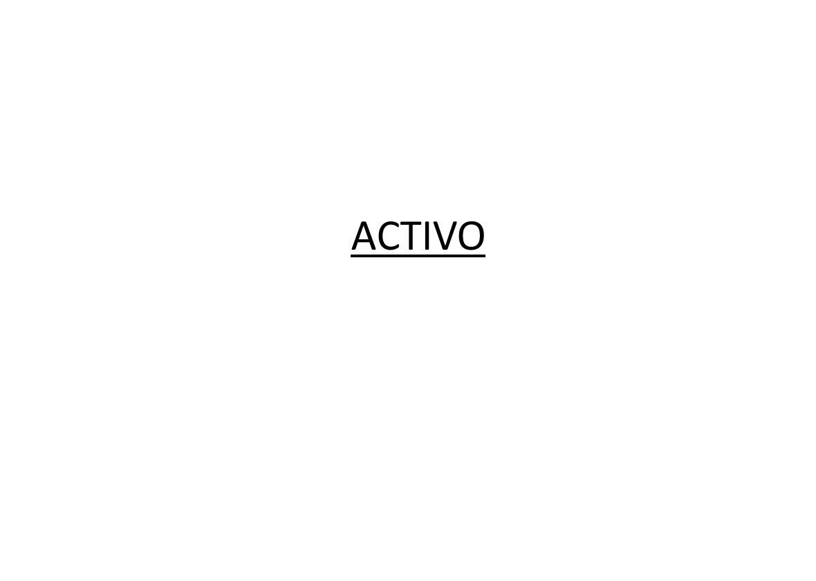 ACTIVO