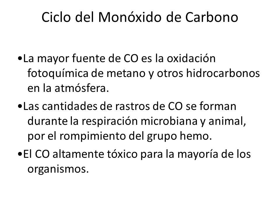 Ciclo del Monóxido de Carbono