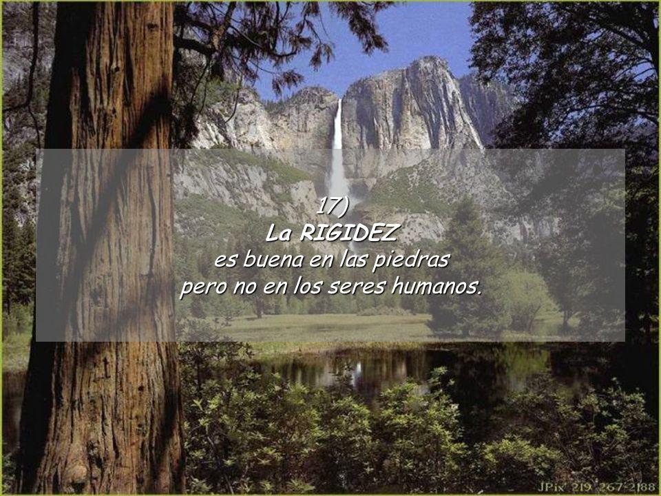 17) La RIGIDEZ es buena en las piedras pero no en los seres humanos.