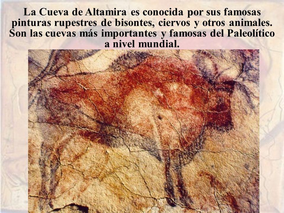 La Cueva de Altamira es conocida por sus famosas pinturas rupestres de bisontes, ciervos y otros animales. Son las cuevas más importantes y famosas del Paleolítico