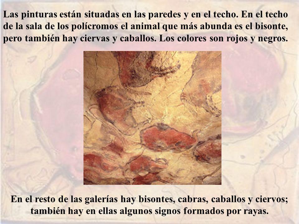 Las pinturas están situadas en las paredes y en el techo