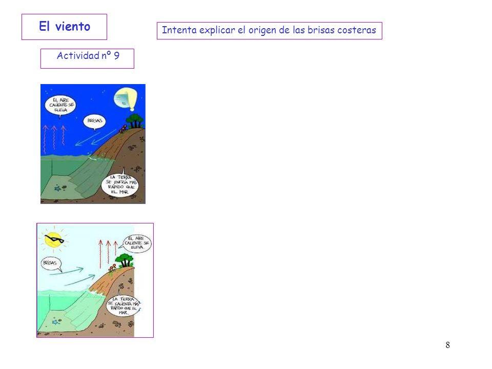 El viento Intenta explicar el origen de las brisas costeras