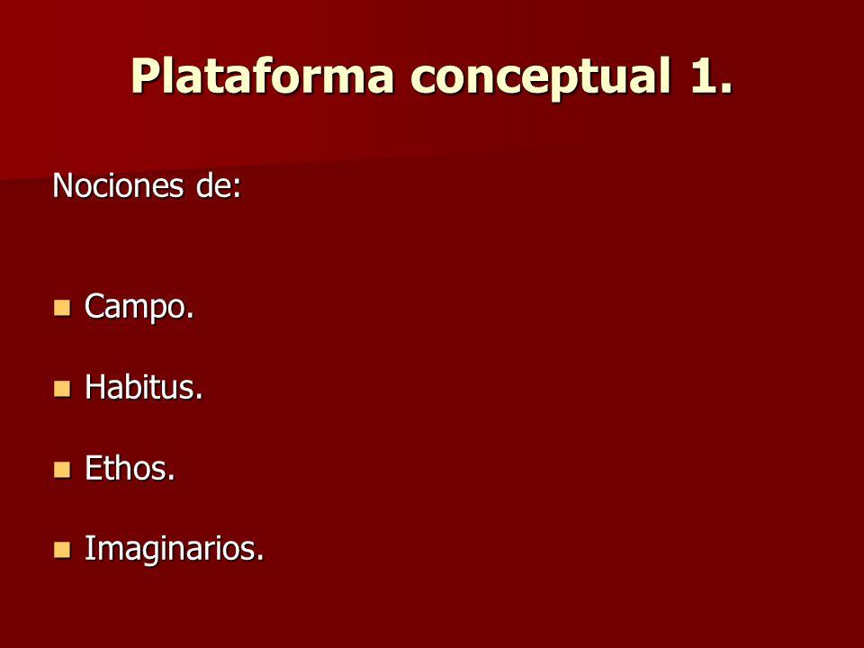 Plataforma conceptual 1.