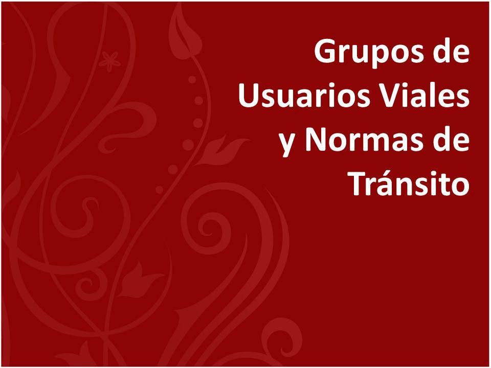 Grupos de Usuarios Viales y Normas de Tránsito