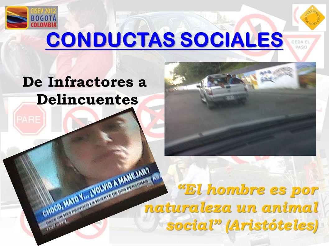 CONDUCTAS SOCIALES De Infractores a Delincuentes