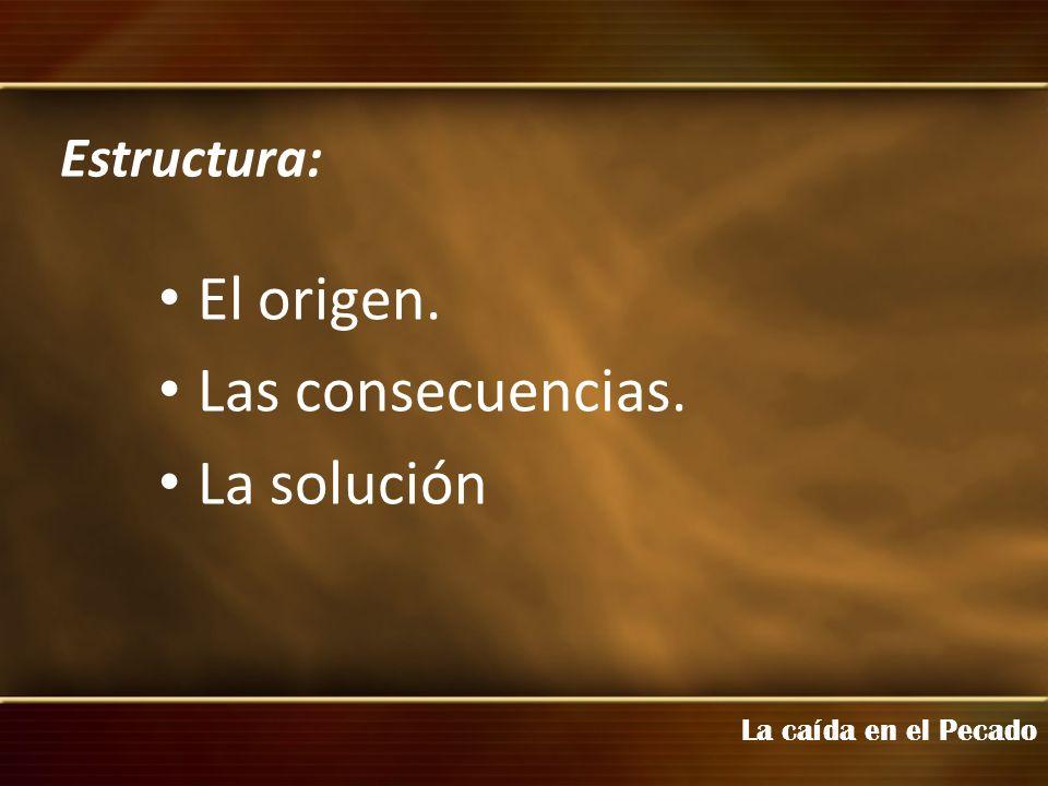 El origen. Las consecuencias. La solución Estructura: