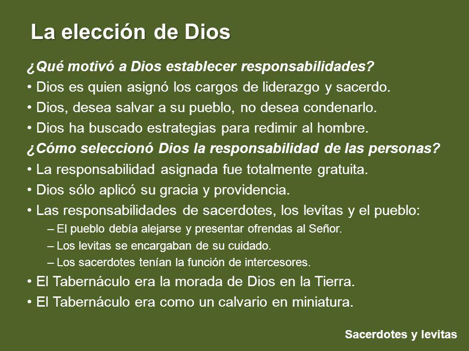 ¿Qué motivó a Dios establecer responsabilidades