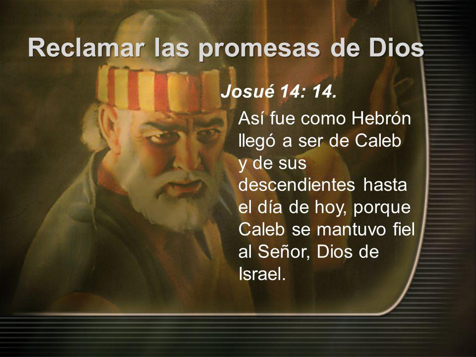 Josué 14: 14.