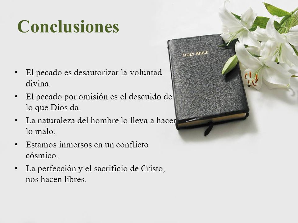 Conclusiones El pecado es desautorizar la voluntad divina.