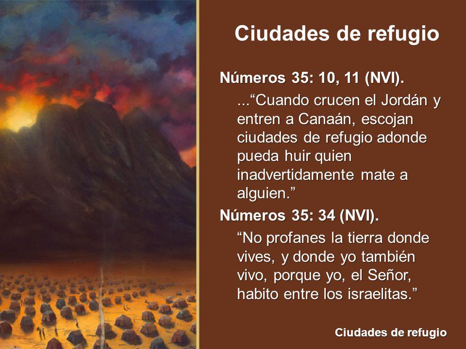 Números 35: 10, 11 (NVI).