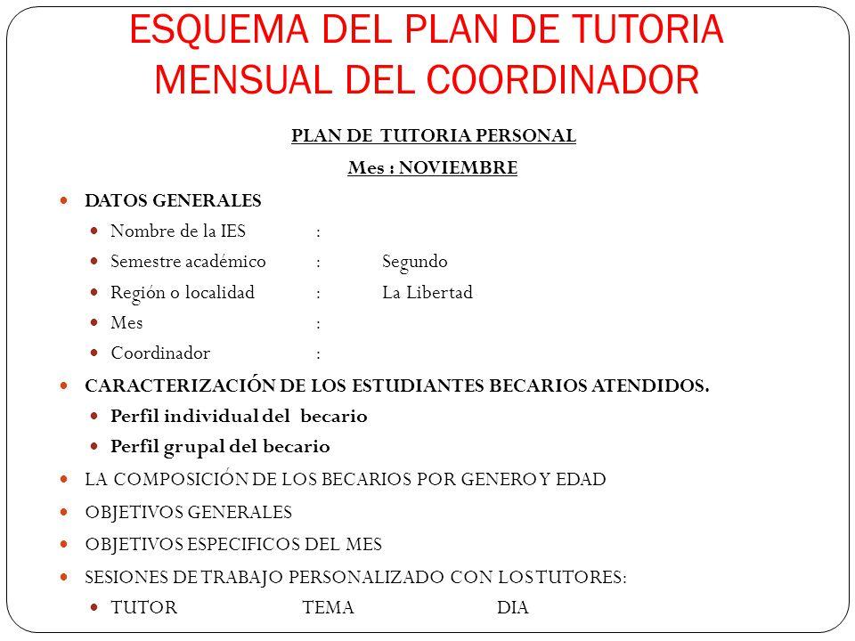 ESQUEMA DEL PLAN DE TUTORIA MENSUAL DEL COORDINADOR