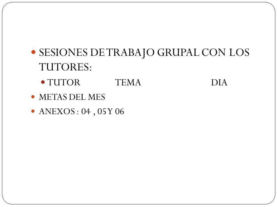 SESIONES DE TRABAJO GRUPAL CON LOS TUTORES: