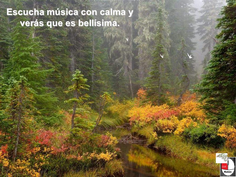 Escucha música con calma y verás que es bellísima.